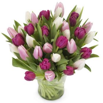 Zoete tulpenmix